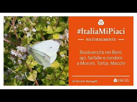 #ItaliaMiPiaci | Naturalmente - Biodiversità nei ...