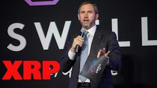 Ripple CEO Sets Record Straight On XRP - Swell Price Surge XRP?