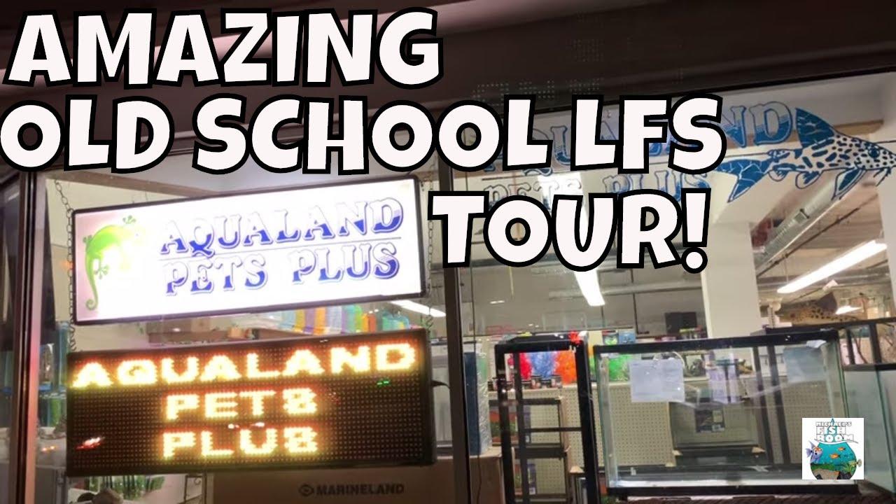 Amazing Old School Local Fish Store Tour Aqualand Pets Plus