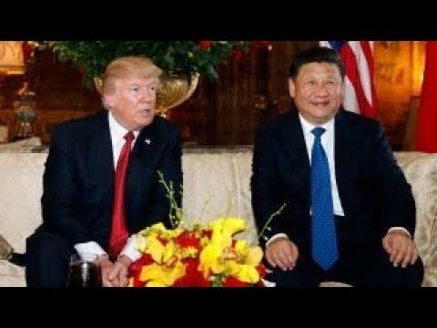 Trump, Xi had good chemistry: Larry Kudlow