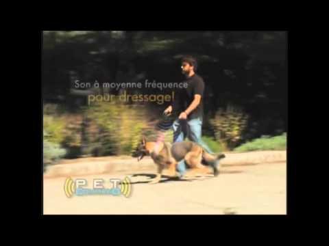 Pet command - Publicité (Doublage parodique)