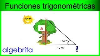 Encontrar la altura de un árbol en base a su sombra proyectada Funciones trigonométricas 367