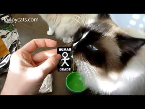 Whole Life Pet Treats New Product Packaging December 2014 - ねこ - ラグドール - Floppycats