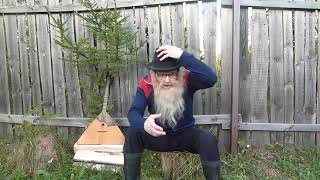 Психология Невменяемые дети Дед Архимед