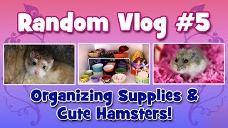 VLOG #5 - Organizing Supplies & Cute Hamsters! Thumbnail