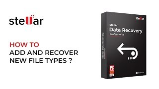 Add New File Types in Stellar Data Recovery Professional for Windows
