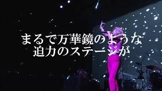 この夏、東京・渋谷で大成功を収めた 中村あゆみ祭『Rock Alive 2018』...