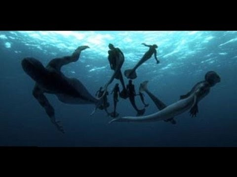Discovery Channel 1/2--Mermaids: The Body Found