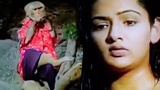 Monkey Watching Aarthi Taking Bath In River | Prabhas, Aarthi Agarwal, Brahmanandam