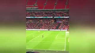 Wembley Goes Crazy for Paper Airplane