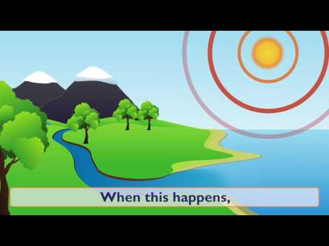 Water Cycle Forms (Kids Lesson)