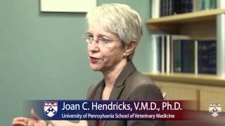 Penn Vet and Research - University of Pennsylvania School of Veterinary Medicine