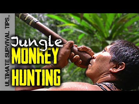 E5: JUNGLE BUSHCRAFT / Monkey Hunting + Whipping Ceremony - OUCH!!!