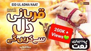 Qurbani Karenge Dil se Karenge | Eid ul Adha Bakra Eid Naat 2021 | Inspired by: Hafiz Tahir Qadri