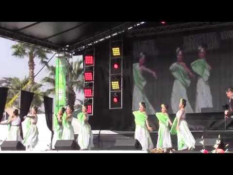 Fresno Hmong New Year 2018-Yeej Huam Dance Academy-Final Round