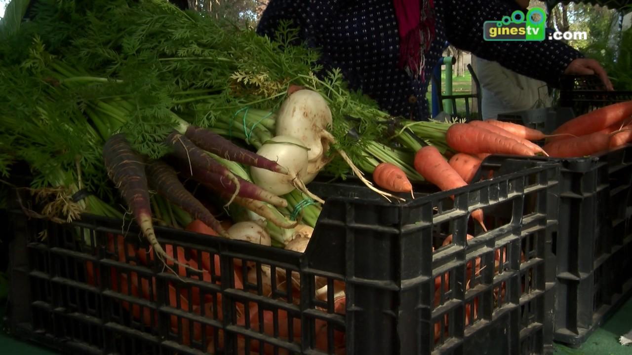 El Parque municipal acogió una nueva edición del Mercado Agroecológico del Aljarafe