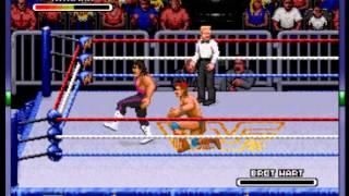 WWF Royal Rumble - -Tatanka Vs Bret Hart- Vizzed.com - User video