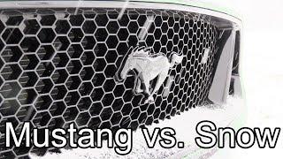 2019 Ford Mustang GT vs Snow!