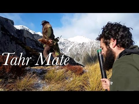 NZ Mountain goat Tahr Hunt with Josh James