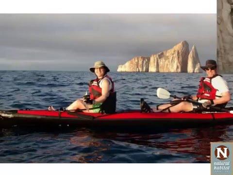 WEBINAR | Galapagos: The Active Experience