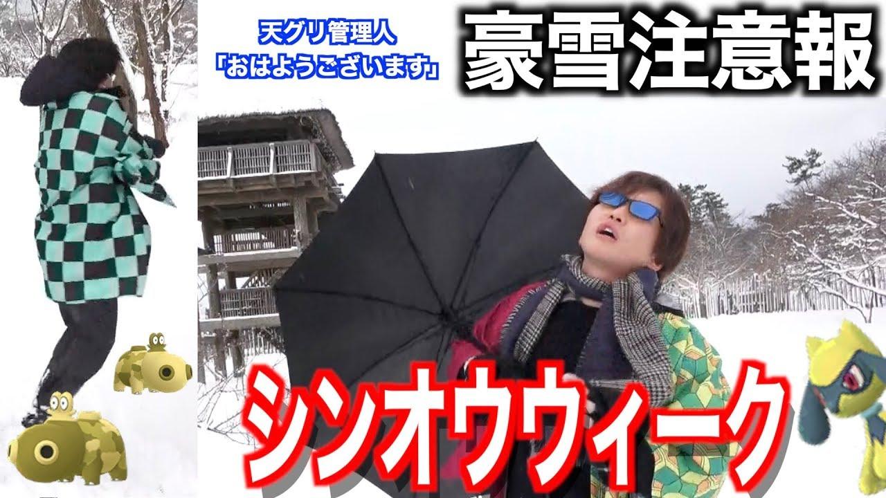 ウィーク ポケモン go シンオウ