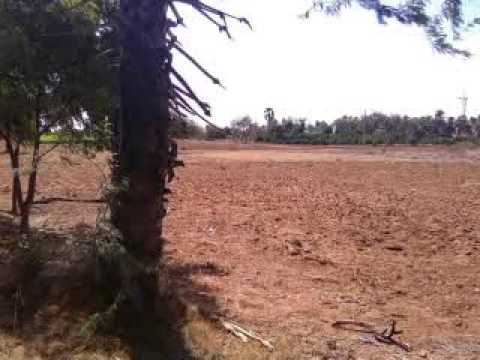 agricultural land in india TamilNadu Call 9500011272