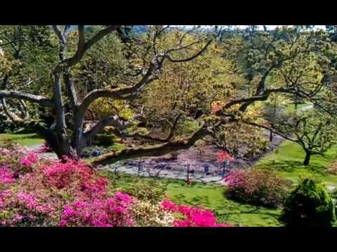 Darts Hill Garden Park - One Woman's Dream - YouTube