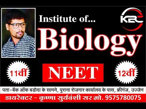 Rapidex english speaking course hindi audio