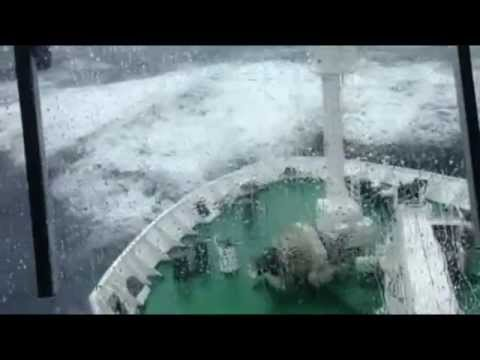 Rough Seas & Antarctic Circle - Wild Living