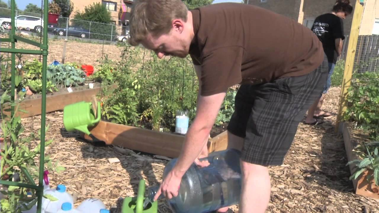 The Peterson Garden Project