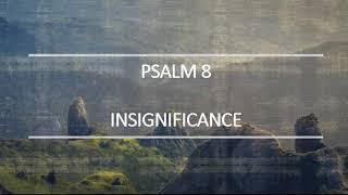 Psalm 8 Insignificance