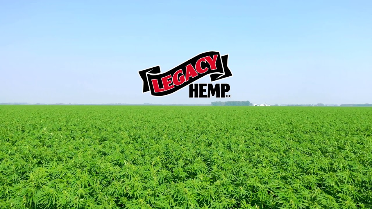 Farming Hemp 101   Legacy Hemp