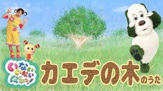 今回ご紹介する曲は「いないいないばあっ! カエデの木のうた」です。 読み聞かせ絵本を紹介しているSound Books(サウンドブックス)です。 ...