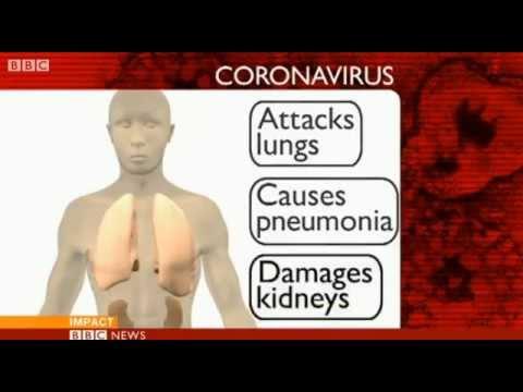 Coronavirus Symptoms Youtube