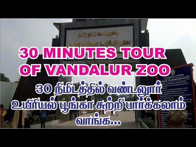 30 minutes tour of vandalur zoo | Arignar anna zoological park chennai