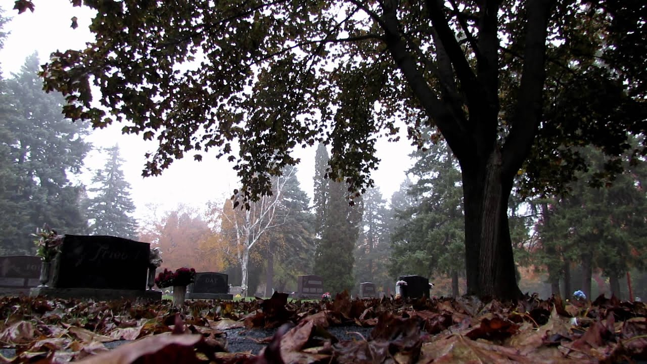 Fall Graveyard Fog and Rain HD