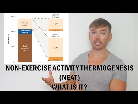 What Is NEAT (Non-Exercise Activity Thermogenesis)?