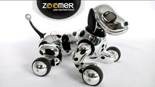 Zoomer Chrome Edition From Spin Master