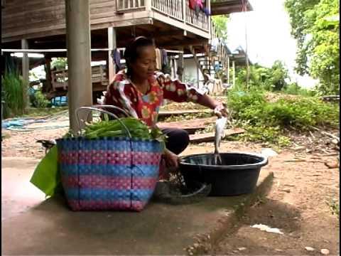 The Mekong: Grounds of Plenty
