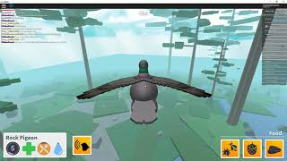 Primer gameplay en la PC Windows 10, Bird Simulator //ROBLOX