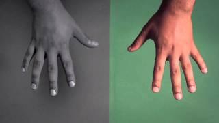 DELS 'Trumpalump' - Official Video