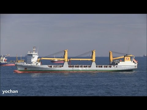 General Cargo / Heavy Lift Ship: ANNEMIEKE (Owner: SAL Heavy Lift, IMO: 9147681)