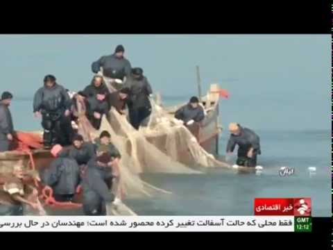 Iran Gilan province, Fishing season in Caspian sea فصل ماهيگيري درياي خزر استان گيلان ايران