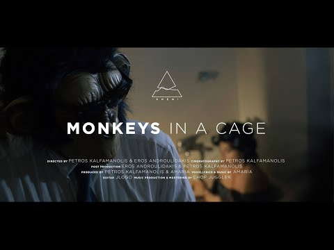 Ānemi - Monkeys in a Cage (Official Music Video)