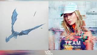 Wow, Team! | Post Malone vs. Iggy Azalea (Mashup)