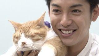 ムビコレのチャンネル登録はこちら▷▷http://goo.gl/ruQ5N7 猫の金時が何...