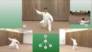 麥永聰師父日本教學- 示範陳家太極38式 Shifu Edward Mak Tokyo Taichi - Chen Style