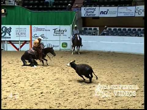 Little Rey Dual   2006 NCHA Derby Open