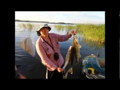рыбалка на судака в саратове видео
