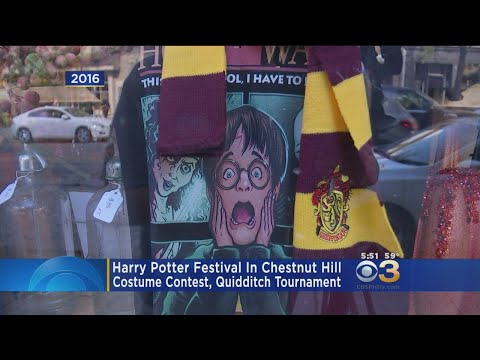 Harry Potter Festival To Take Place In Chestnut Hill This Weekend